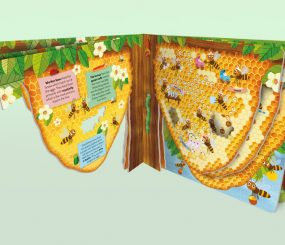 Explora el reino animal